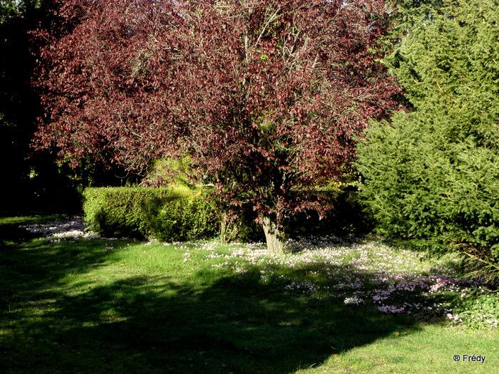 Entre Acon et Dampierre Sur Avre 20101025_010