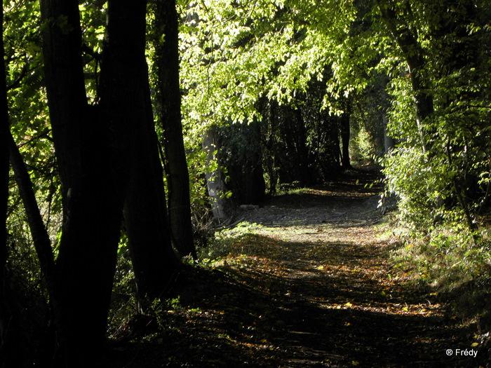 Entre Acon et Dampierre Sur Avre 20101025_021