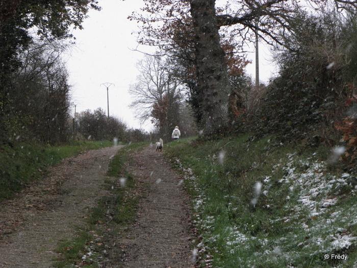 Champignolles, sous la neige 20101126_007