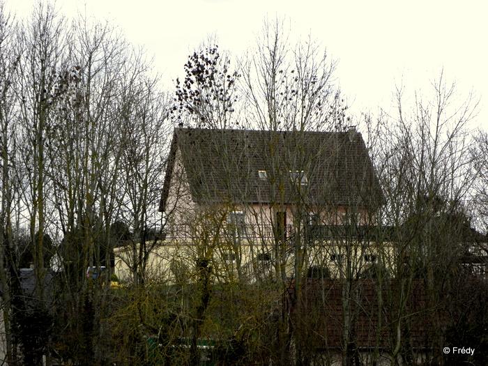 Evreux, Coteaux de Saint-Michel 20110114_005