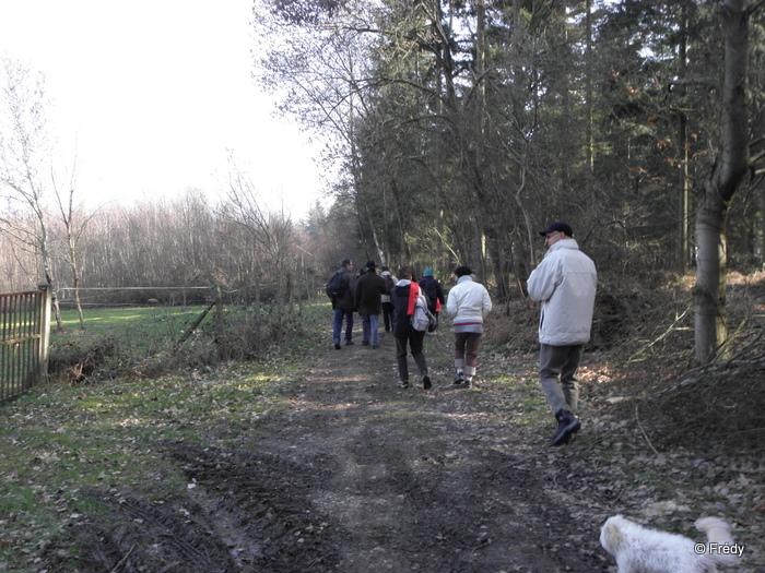 Brosville, variante de 10 kilomètres 20110302_002