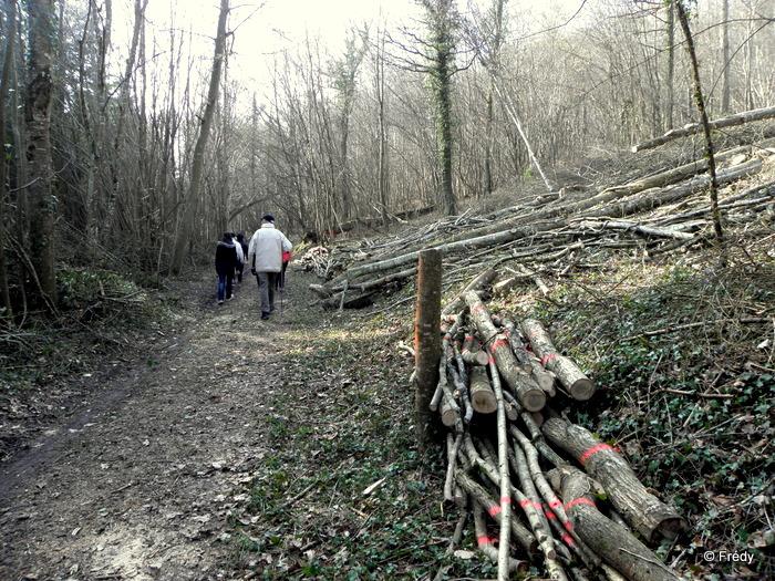 Brosville, variante de 10 kilomètres 20110302_010