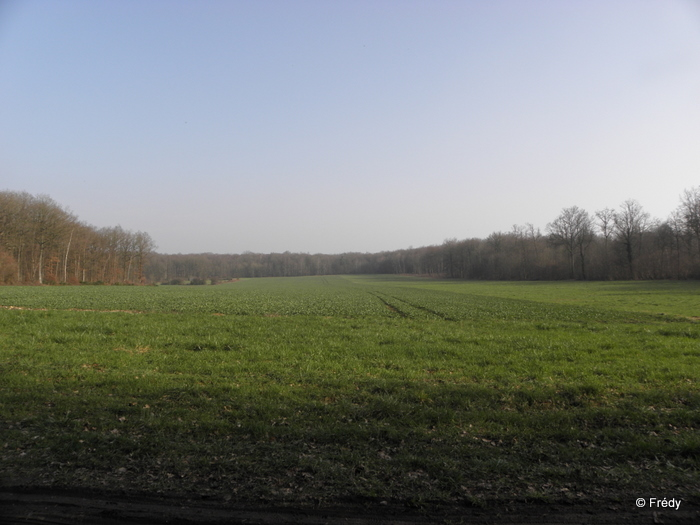 Brosville, variante de 10 kilomètres 20110302_013
