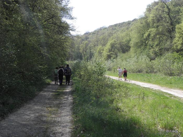 Tourneville 20110418_006
