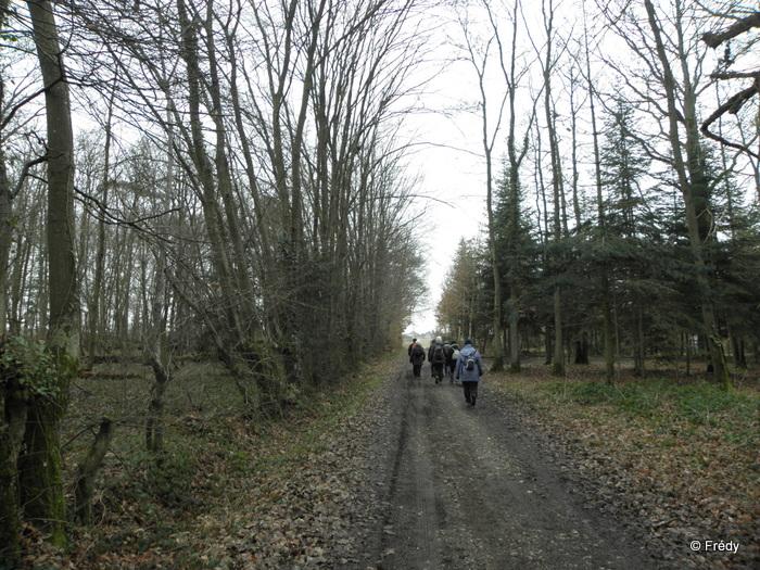 Damville, circuit des Chérottes 20130228_002