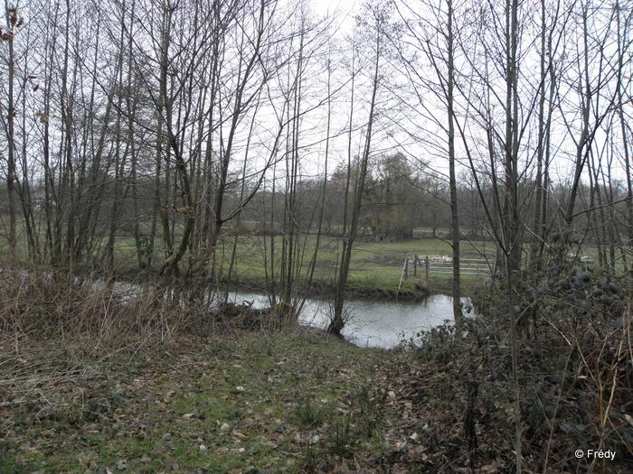 Damville, circuit des Chérottes 20130228_008