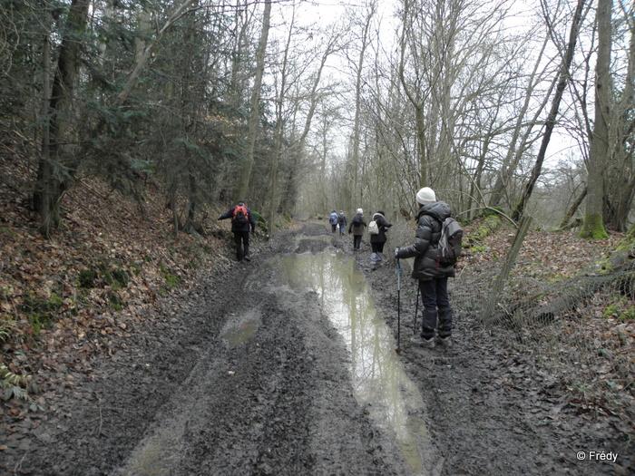 Damville, circuit des Chérottes 20130228_009