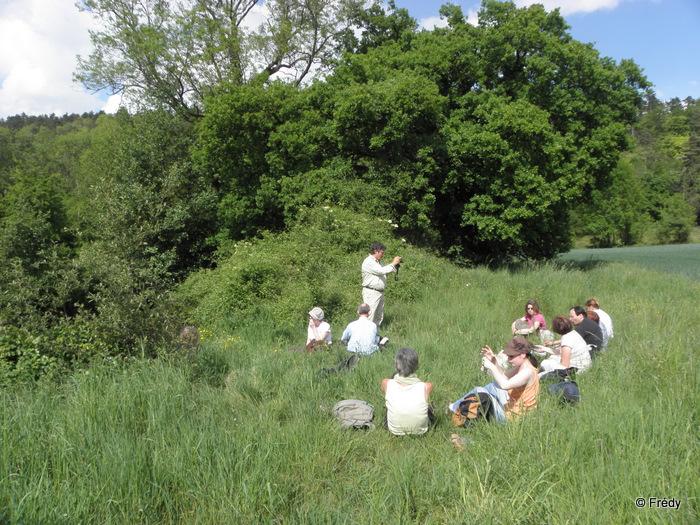 Les étangs d'Acquigny, sans Iton-Rando 20110508_017