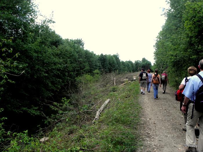 Les étangs d'Acquigny, sans Iton-Rando 20110508_020