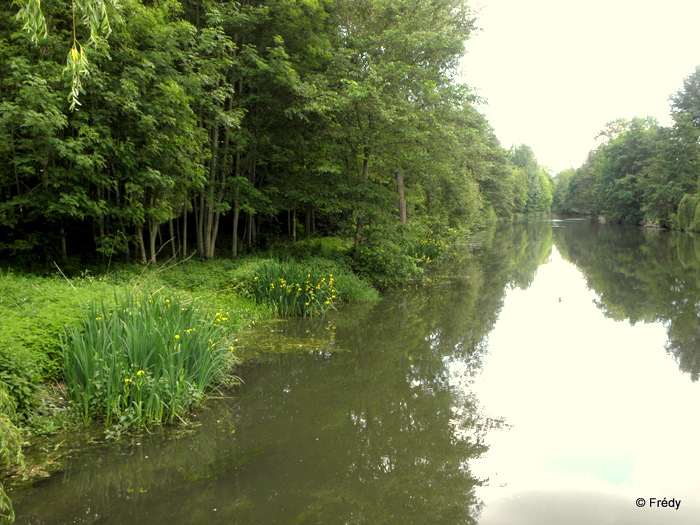 Les étangs d'Acquigny, sans Iton-Rando 20110508_021