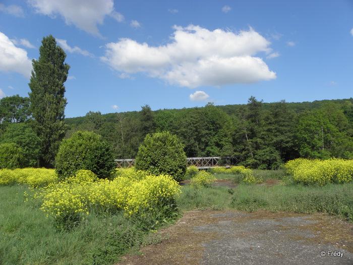 Les étangs d'Acquigny, sans Iton-Rando 20110508_023