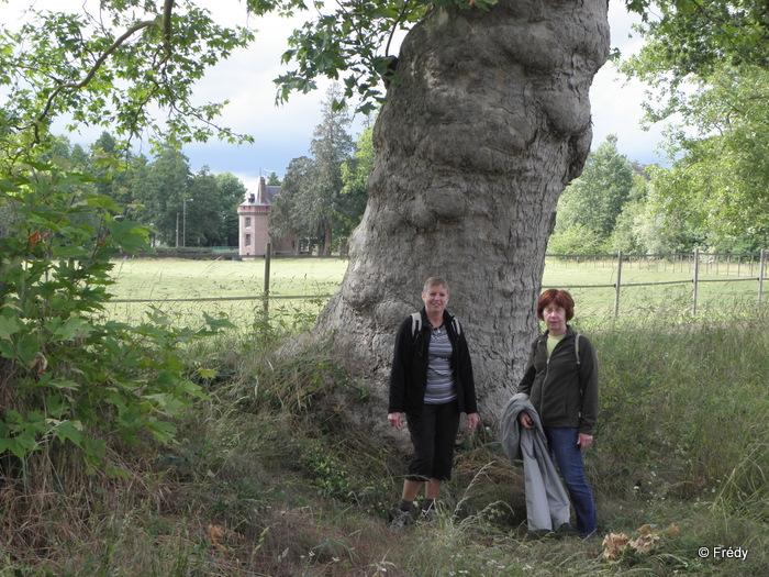 La Gaudrée et le château de Chambray, sans Iton-Rando 20110610_011