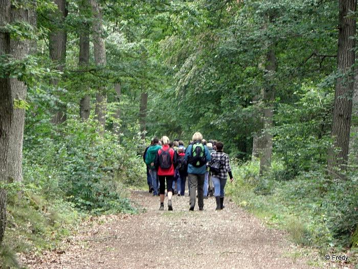 11 kilomètres en forêt d'Evreux 20110717_007