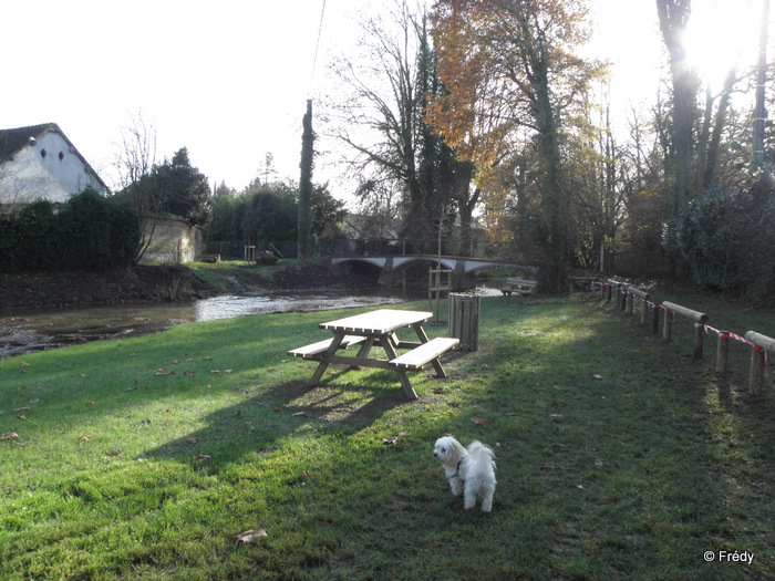 Marcilly Sur Eure 20111130_002