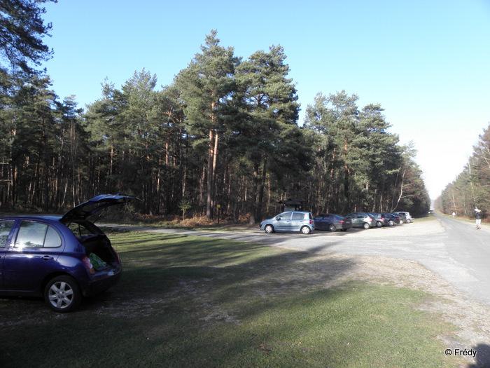 Forêt de Bord-Louviers, Rond de Cobourg 20120114_001