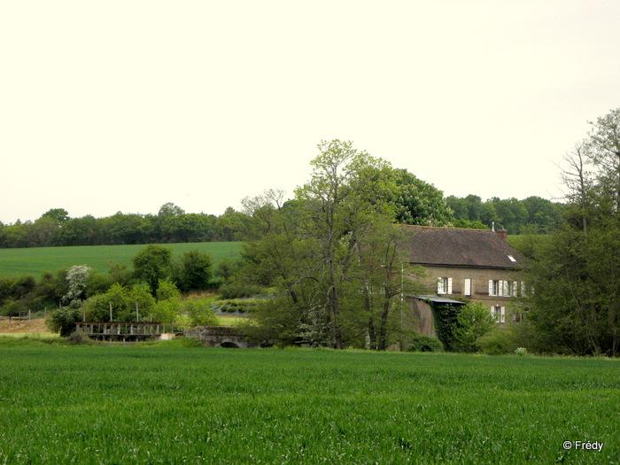 Champignolles 20120519_014